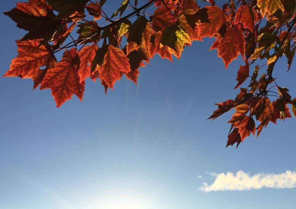 Fall Events in Kelowna Okanagan, McKinley Beach